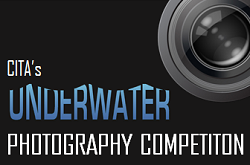 Underwater Photographers, get your cameras out!