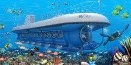 Atlantis Adventures (Cayman) Ltd