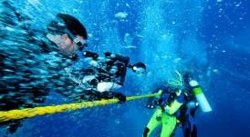 Divers Alert Network (DAN)