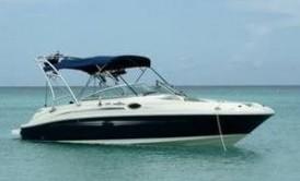 Avalon Marine