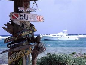 Driftwood signs, Cayman Brac
