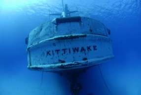 Kittiwake by Larson Wood