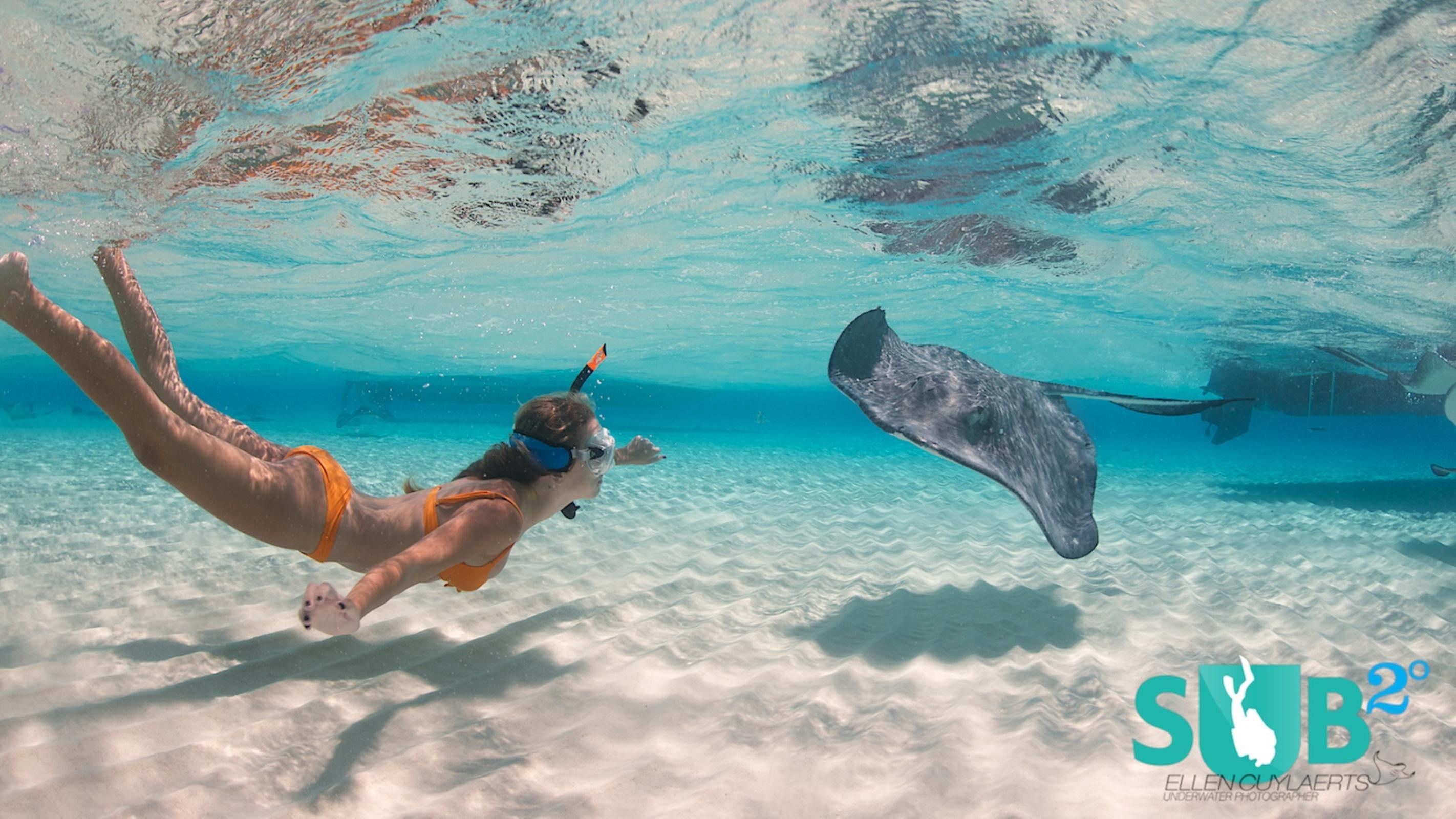 Cayman Islands Atlantis